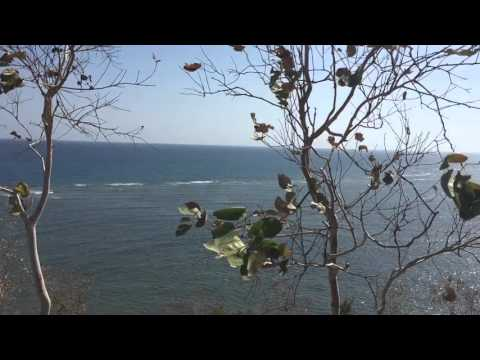 Dili Beach Tourism Chapter 1