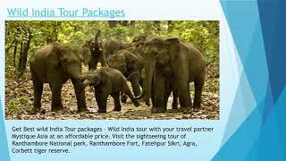 Mystique Asia — Tour and Travel Partner
