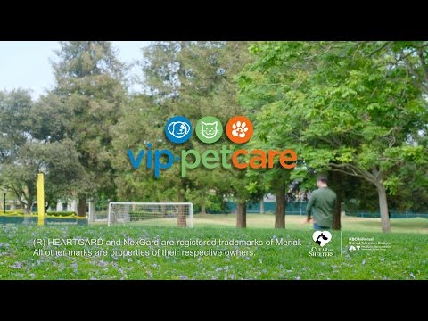 VIP Petcare Commercial