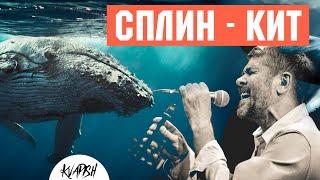 Сплин - Кит (Кавер на гитаре Аккорды) Песни под гитару