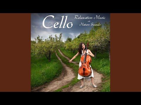 The Fin Galians Dance (Sound of Rain, White Noise, Relaxing Music)