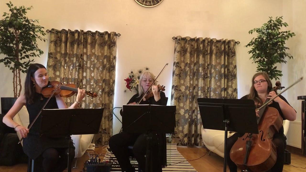 The Munster String Quartet Video 7