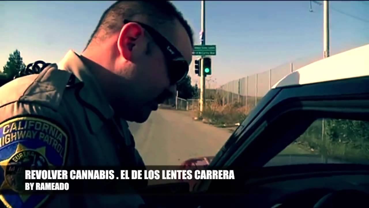 3fda36c3b5 Revolver Cannabis - El de los lentes Carrera (Video HD 3D) + Letra de  Canciòn - YouTube