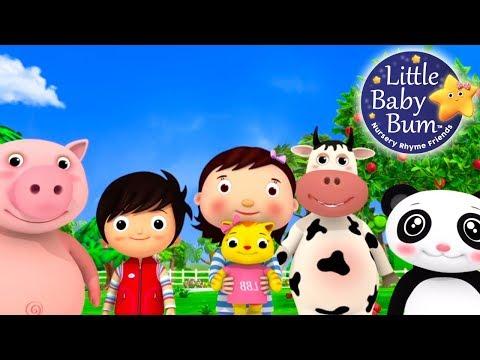 Nursery Rhyme Videos   Compilation from LittleBabyBum!   New Live Stream!