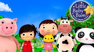 Nursery Rhyme Videos | Compilation from LittleBabyBum! | New Live Stream!