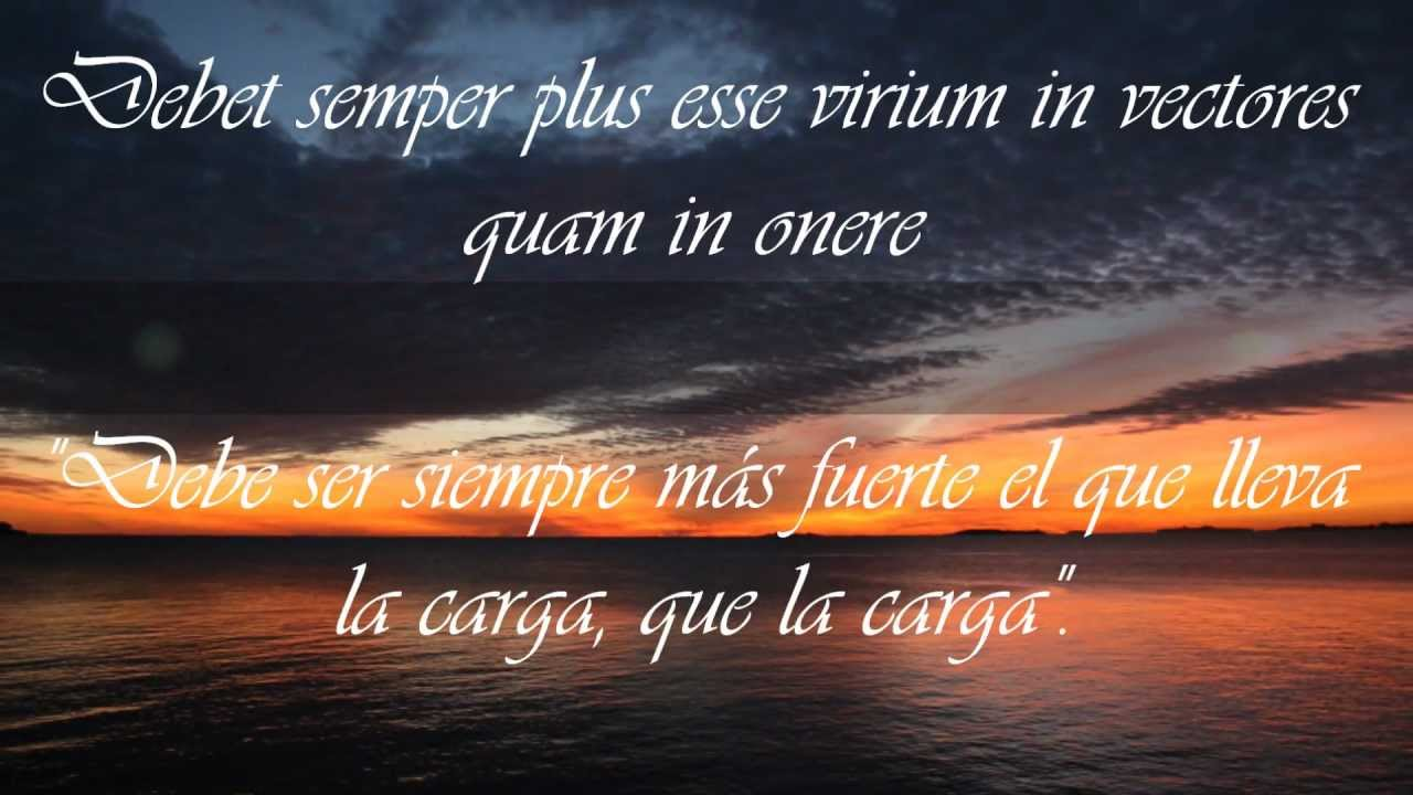 Frases De Amor En Portugués Traducidas Al Español: Frases En Latín Que Empiezan Con La Letra D Traducidas Al
