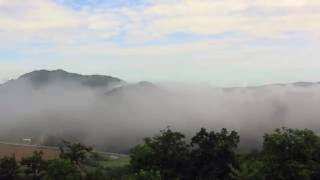 Mid-Morning Fog Rolling Through the Great Smoky Mountains in Wears Valley, Tennessee.