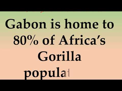 Cool, Funny, and Fun Facts About Gabon