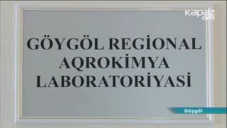 Göygöl Regional Aqrokimya laboratosiyasına müraciət edən fermerlərin sayı artıb