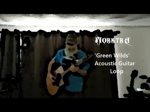 'Green Wilds' Acoustic Guitar Loop Performance
