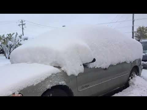 Red Deer & Edmonton Help After 30 cm of SNOW in Calgary, Alberta