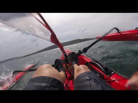 Hobie Adventure Island - Sailing Fast in Sydney Harbour