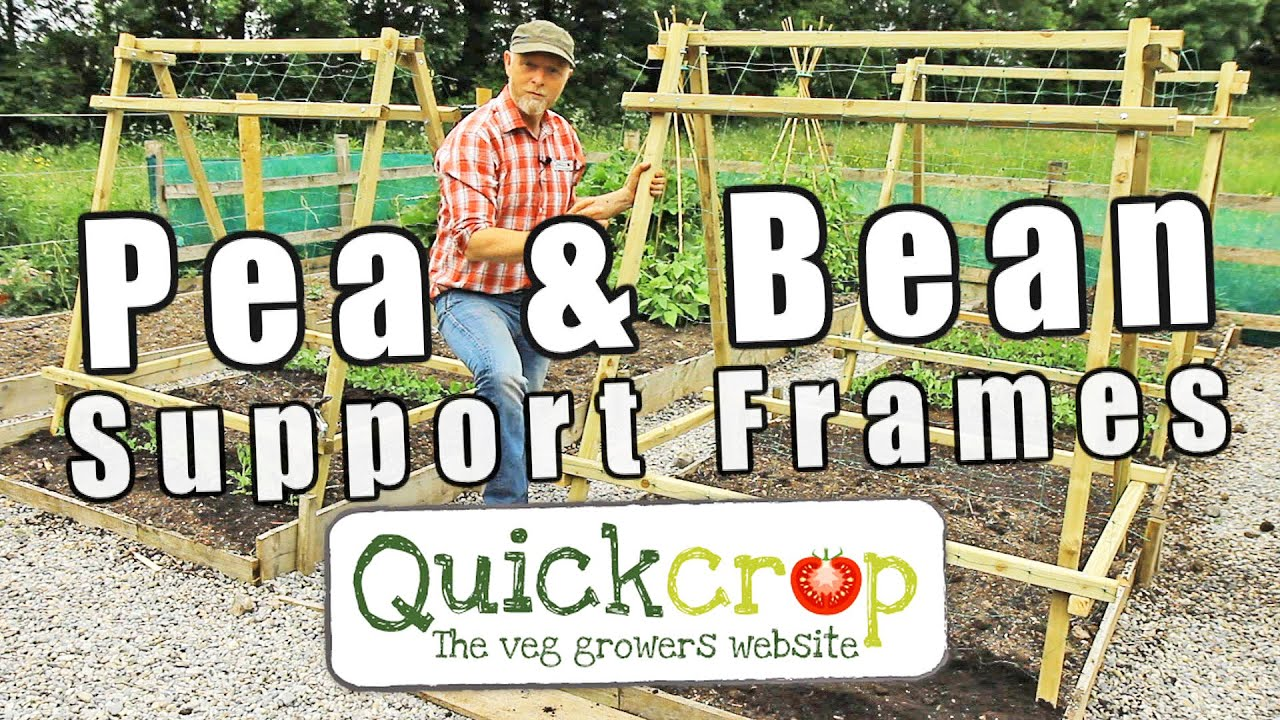 Pea and Bean Support Frames - YouTube