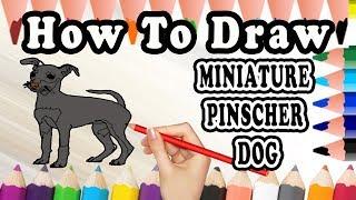 How To Draw A Miniature Pinscher DOG