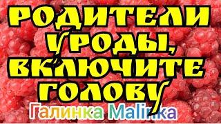 Колесниковы /Родители Уроды, включите голову //Обзор Влогов //