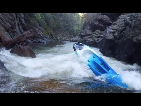 Kayaking the Hutt Gorge on a sit-on-top