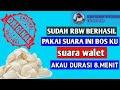 Sp Akau Durasi    Mp3 - Mp4 Download