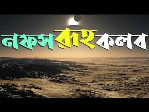 রুহ নফস কলব | বাংলা ইসলামি লেকচার