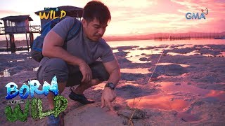 Born to Be Wild: Doc Ferds catches mantis shrimps