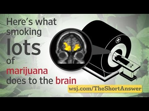 Marijuana: Heavy Users Risk Changes to Brain