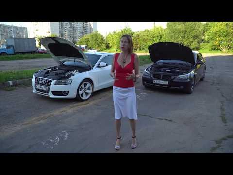 Ауди против БМВ. Audi vs BMW. Ауди а5 vs БМВ 5. Лиса рулит. Елена Лисовская