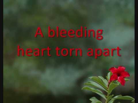 The Corrs-Forgiven Not Forgotten- Lyrics