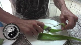 Benefits of eating an Aloe Vera plant and how to.