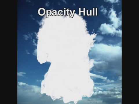 Image-Based 3D Photography using Opacity Hulls