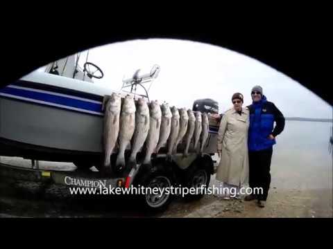 12 28 17 pat 39 s lake whitney striper fishing guide service for Lake whitney fishing guide
