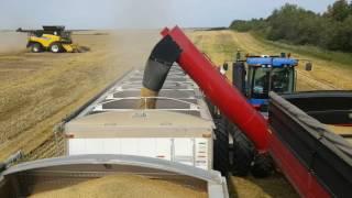 Brent 1594 Grain Cart, (Fast Unloading Auger)