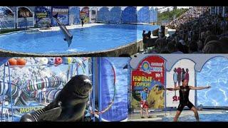 Акватория театр морских животных в Ялте дельфины тюлени котики