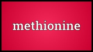 Methionine Meaning
