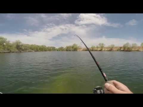 DROP SHOT BASS FISHING