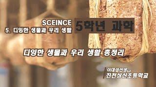 5학년 1학기 과학 5단원 다양한 생물과 우리 생활 (…