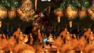 DKC3 105% Run pt 45 - Level 8-3: Tyrant Twin Tussle