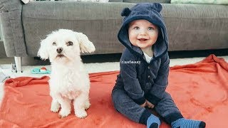 OUR BABY & PUPPY ARE BEST FRIENDS & It's Absolutely Adorable!