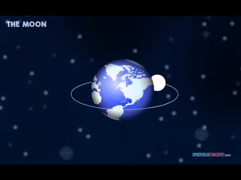 Phases Of The Moon | Science Video For Kids