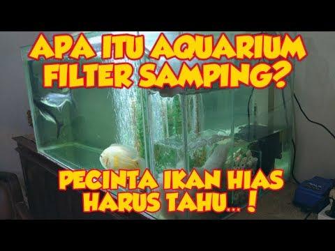 REVIEW AQUARIUM FILTER SAMPING