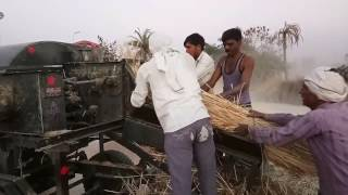 Multi crop cutter thresher mfg by jagdamba agro industries 9993951479 & 8989110981