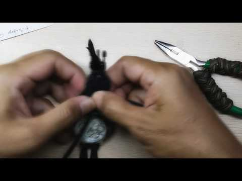 Tyrannosaurus Watchband