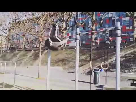 Street Workout Lyon France -Armen