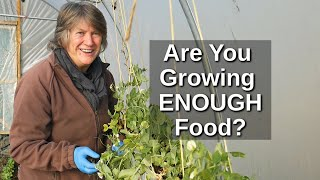 How Much to Grow for Self Sufficiency   Food Security and Resilience (2020)
