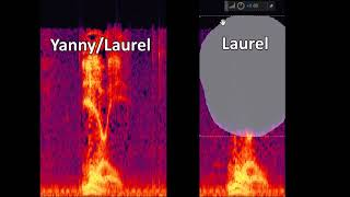 Yanny or Laurel *Explained* (Read Description)
