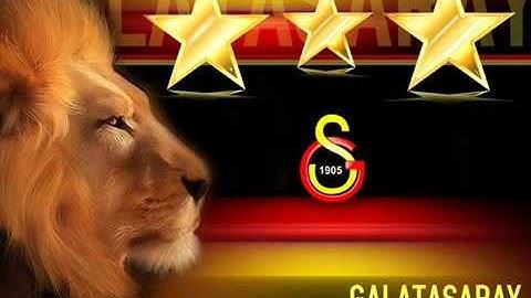 Cimbom Galatasaray , Galatasaray Şampiyon 2oı3