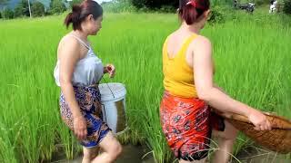 Beautiful girl fishing - amazing fishing in cambodia - how to catch part (14) - girl news  part 121