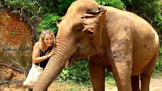 Mud Bathing With Elephants In Chiang Mai's Elephant Nature Park