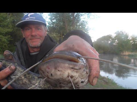 Первая рыбалка на сома в мае на слом погоды. Рыбалка в Беларуси на реке Свислочь.