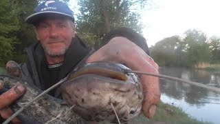 Первая рыбалка на сома в мае на слом погоды Рыбалка в Беларуси на реке Свислочь