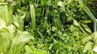 LUAR BIASA!! 30 Manfaat dan Khasiat Sayuran Hijau untuk Kesehatan