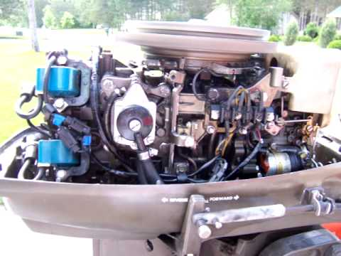 hqdefault rebuilt 1976 35 hp johnson seahorse youtube 1981 evinrude 35 hp wiring diagram at virtualis.co